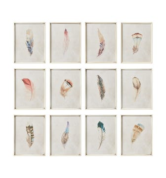 Set of 12 Feather Prints - Multi