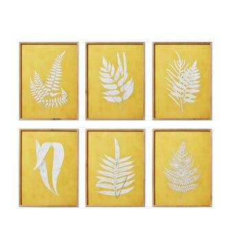 Set of 6 Fern Framed Prints - Ochre