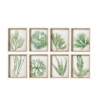 Set of 8 Coral and Seaweed Prints - Green