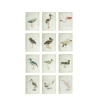 Bird Paintings, Set of 12 - Multi