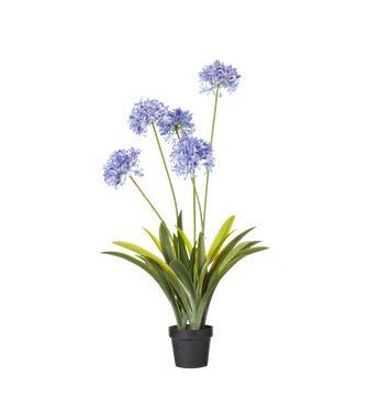 Faux Agapanthus Plant - Purple