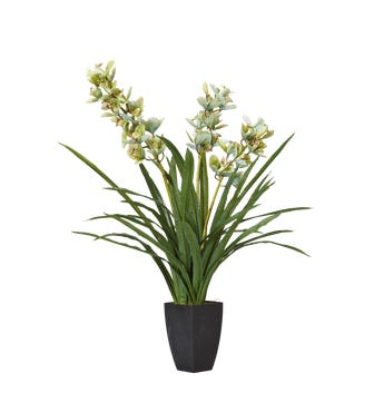 Faux Cymbidium Orchid With Narrow Vase - Green