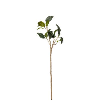 Faux Datura Leaf Branch - Green