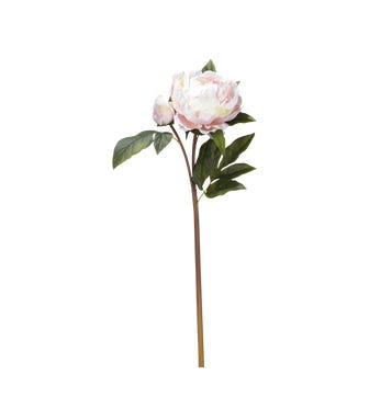 Faux Full Peony Stem - Pale Pink