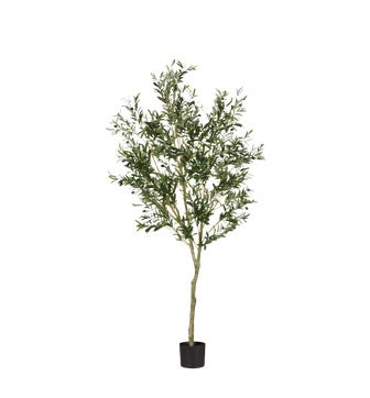 Faux Large Potted Olive Tree - Black