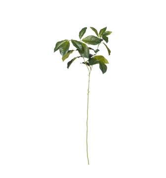 Faux Laurel Leaves Stem - Green