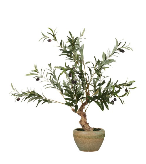 Faux Miniature Olive Tree - Black