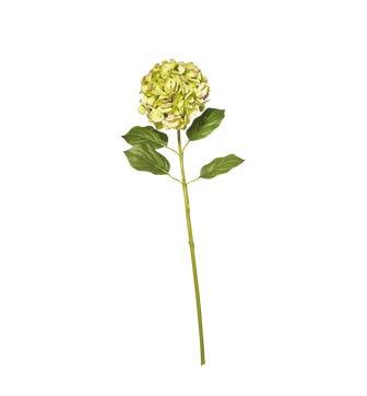 Faux Mophead Hydrangea Stem, Long - Faded Autumn Green