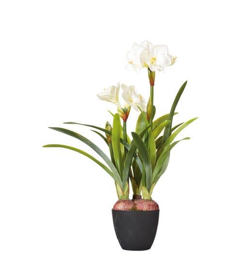 Faux Potted Amaryllis Plant - White