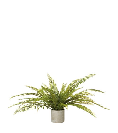 Faux Potted Fern Plant - Green