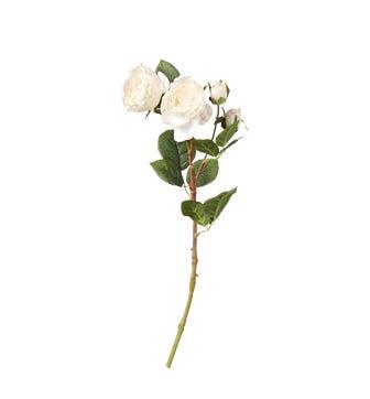 Faux Rose Stem - Flushed Cream