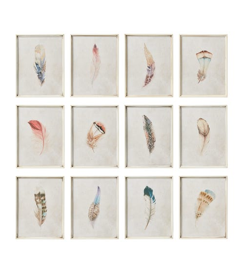 Feather Prints Set of 12 - Multi