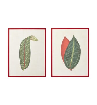 Pair of Framed Asinara Leaf Prints - Multi