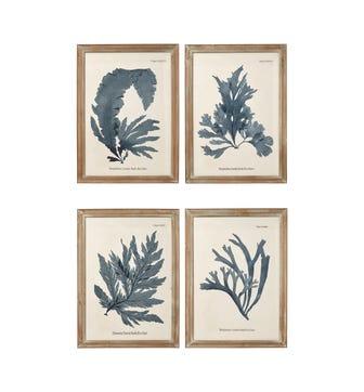 Seaweed Framed Prints, Set of 4 - Blue