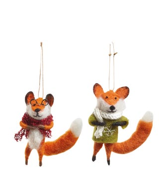 Strictly Foxed: Mr & Mrs Trot