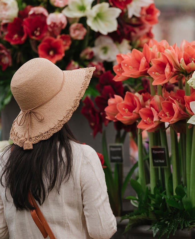 Woman wearing a hat looking at flowers at the RHS Chelsea Flower Show